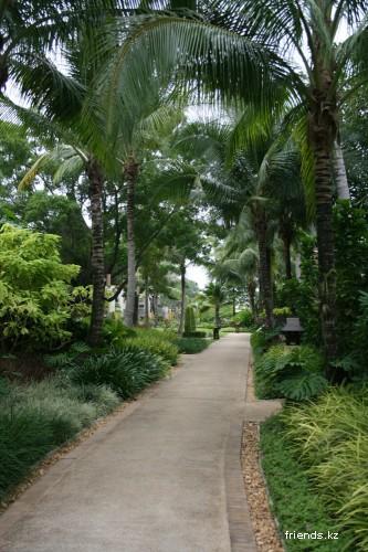 Поездка в Тайланд на Пхукет, день первый