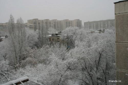 Воскресное утро в Алматы
