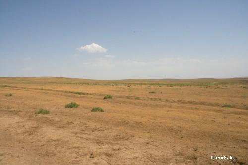 Куртинское водохранилище (июнь 2008)
