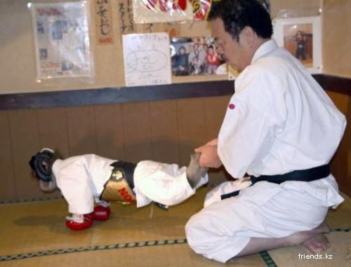 Обезьяна мастер карате