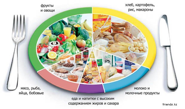 что входит в правильное питание окружающий мир