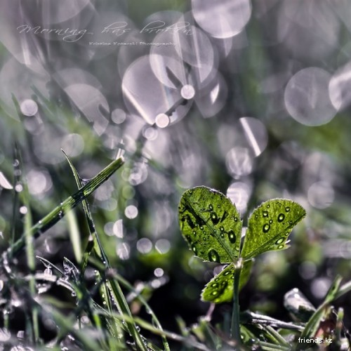 Kristina Kotarski Photography