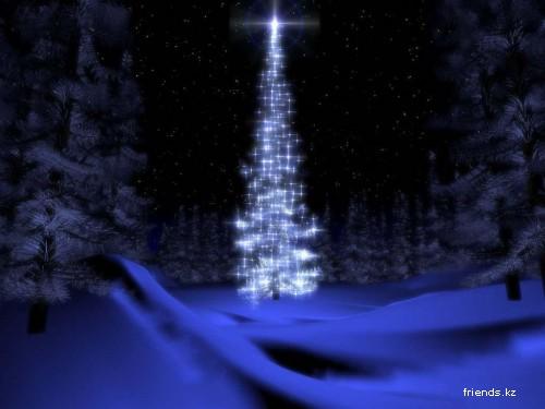 Здравствуй, ёлка, Новый Год...