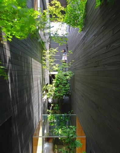 MORI × Hako в Фукуяме