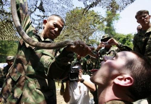 Обмен опытом американских и тайских войск