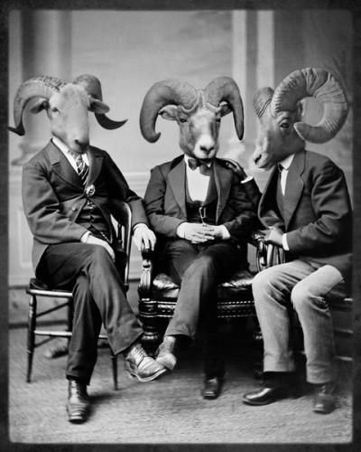 Животные и джентльмены