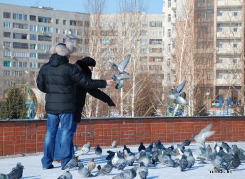 Зимний Павлодар