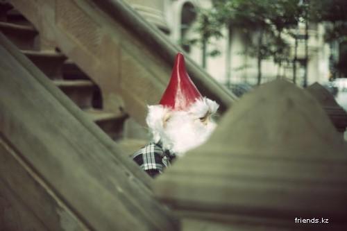 """Жизнь Гнома""  Photography"