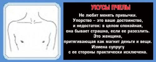 Форма груди и ее значение